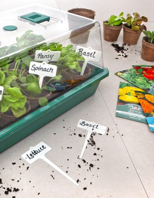 Propagation Products Mr Fothergill S Seeds