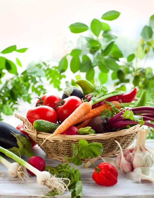 Buy Vegetable Seeds Online | Largest range in Australia ...