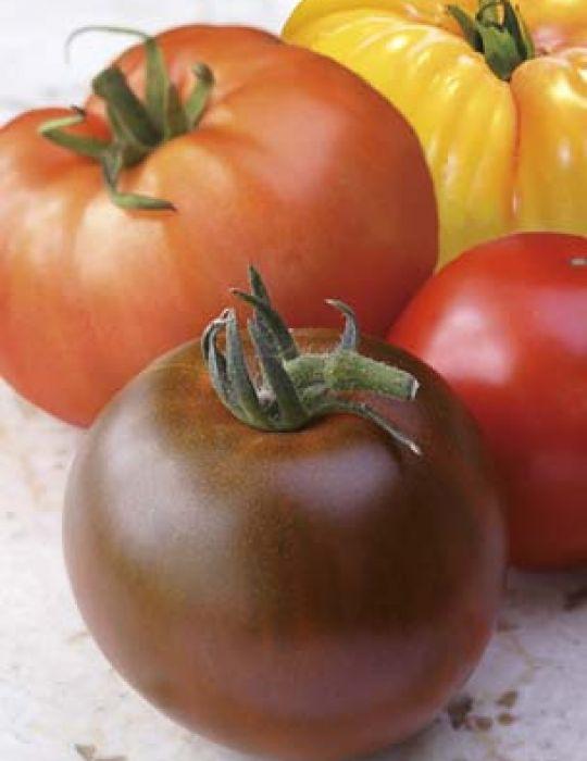Tomato Gourmet Mix