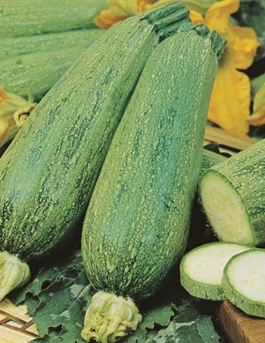 Zucchini Lebanese