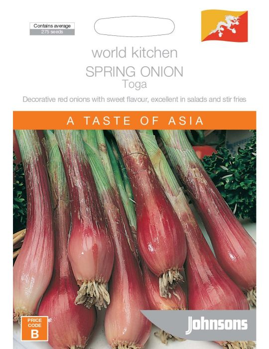 Spring Onion Toga