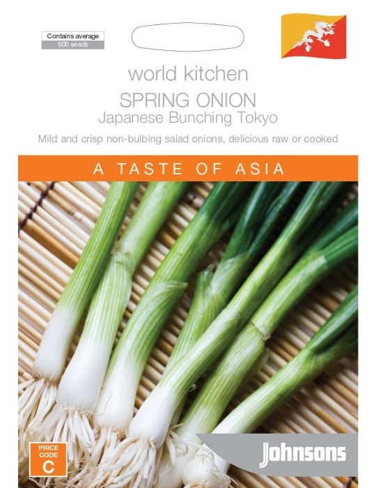 Spring Onion Japanese Bunching Tokyo