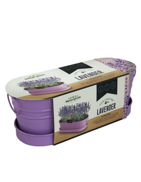 Lavender - Windowsill Tin