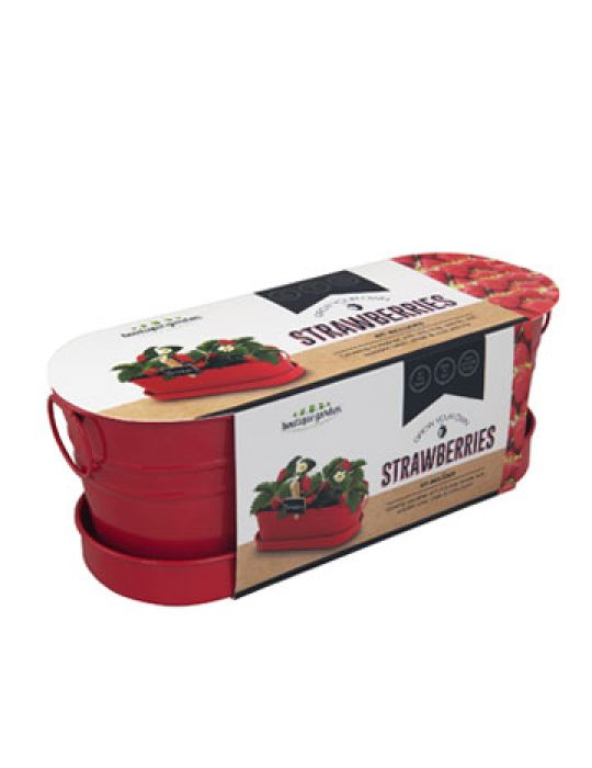 Strawberry - Windowsill Tin