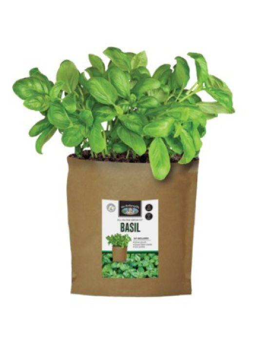 Basil - Grow Pouch Kit