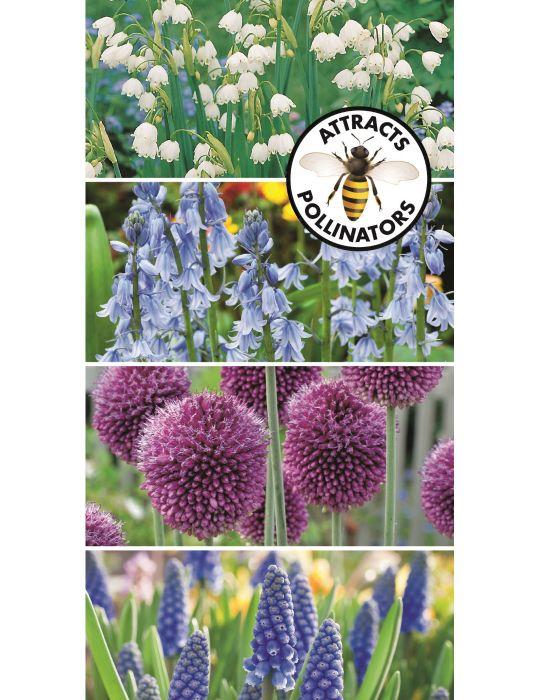 Bee Friendly Spring Garden Mix