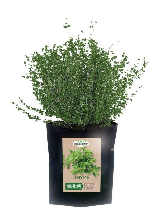 Thyme - Grow Pouch Kit