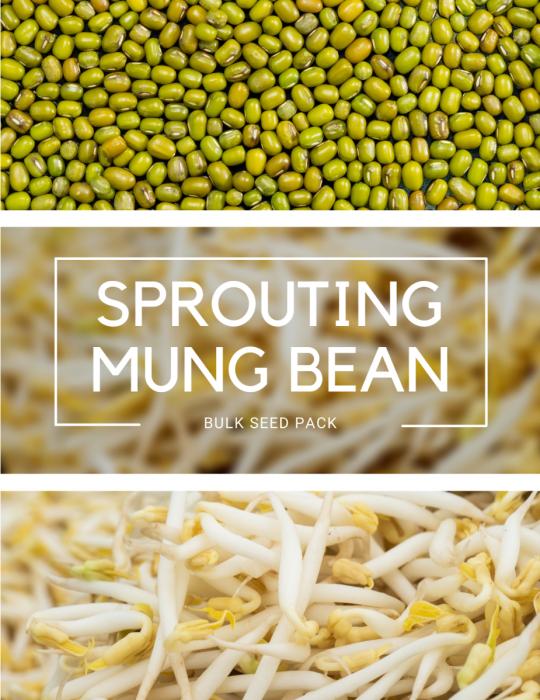 Sprouting Mung Bean - BULK BAG
