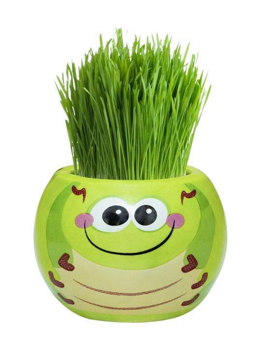 Grass Hair Kit - Friendly Bugs (Caterpillar)
