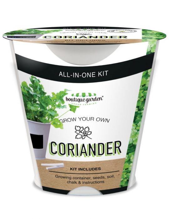 Coriander- Chalkboard Grow Kit Tin