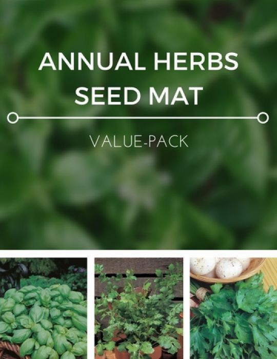Annual Herbs Seed Mat Value Pack