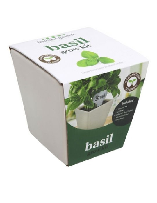Square Ceramic Pot Basil