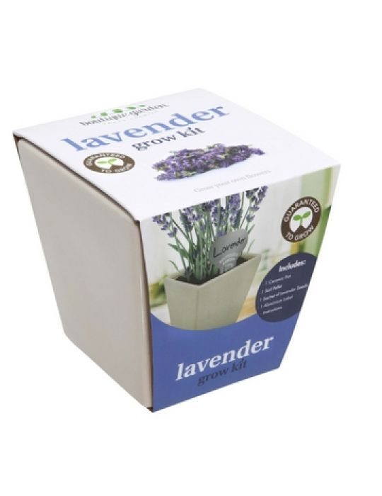 Square Ceramic Pot Lavender