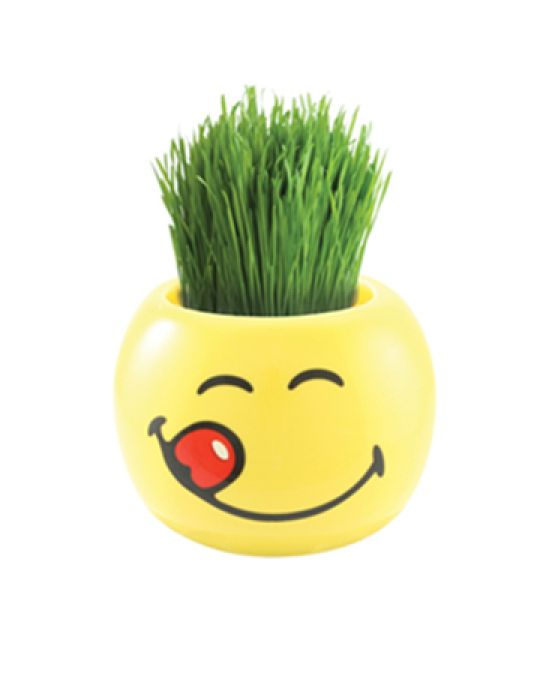 Grass Hair Kit -Smiley Faces (Delicious)