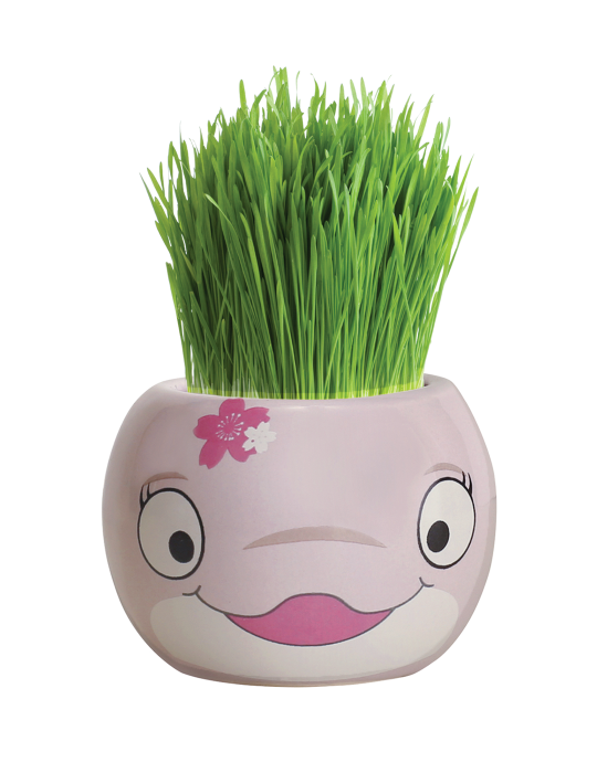 Grass Hair Kit - Ocean Animals (Dolphin)