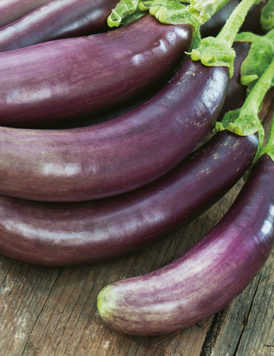 Eggplant Little Fingers