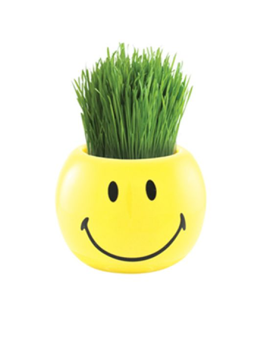 Grass Hair Kit -Smiley Faces (Happy)