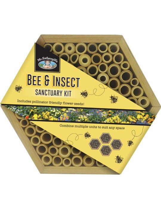 Bee & Insect Sanctuary Kit - Hexagonal