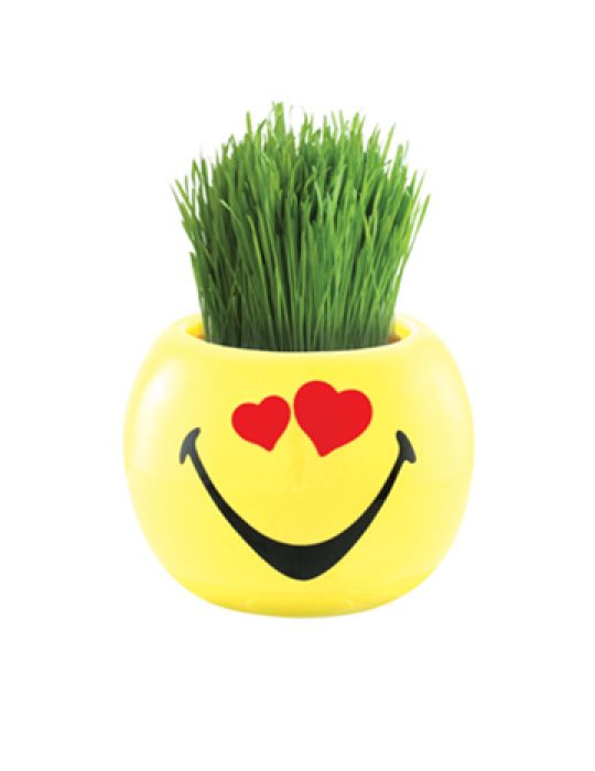 Grass Hair Kit -Smiley Faces (Love)