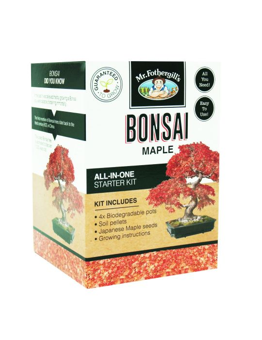 Bonsai Starter Kit - Maple