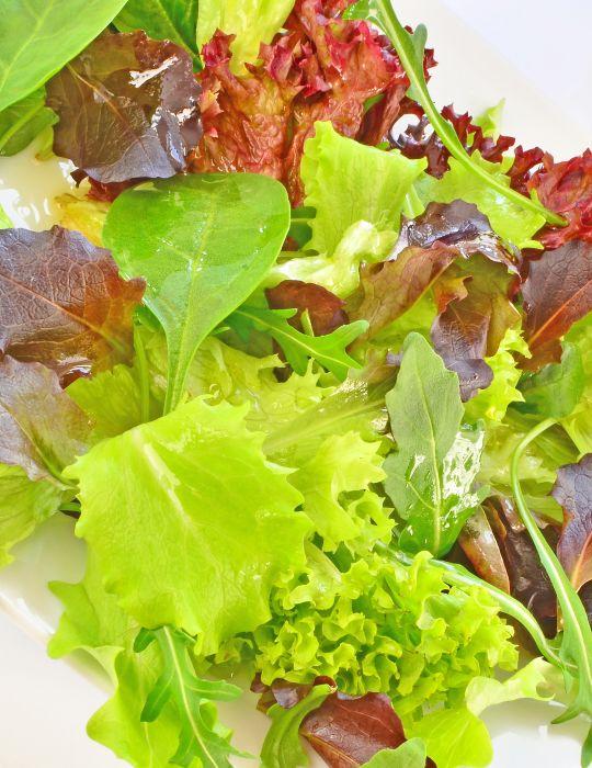 Mesclun Gourmet Salad