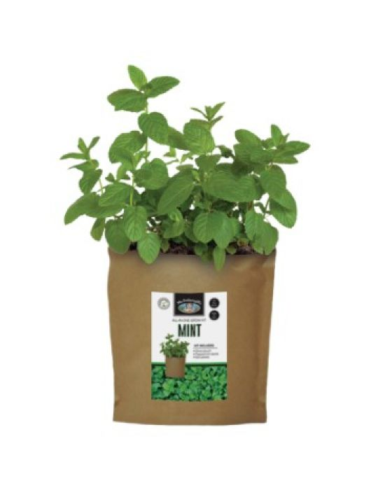 Mint - Grow Pouch Kit