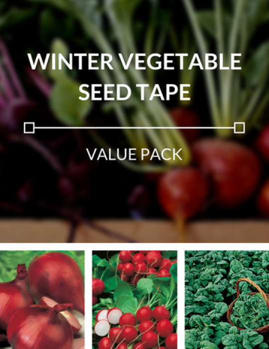 Winter Vegetables Seed Tapes Value Pack