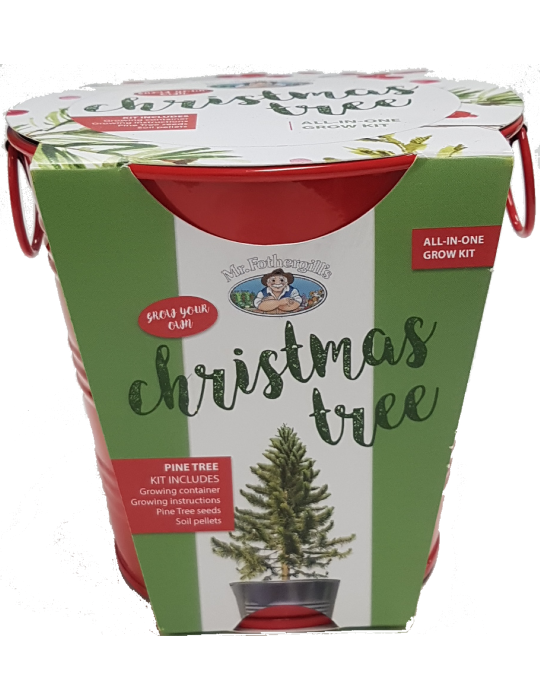 Christmas Tree - Round Grow Kit Tin (Limited Edition Red)