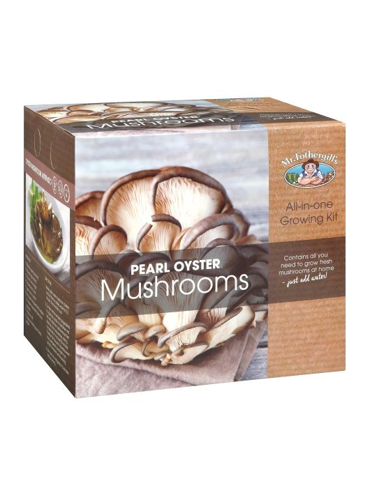 Pearl Oyster Mushroom Kit - NOT AVAILABLE TO WA & TAS