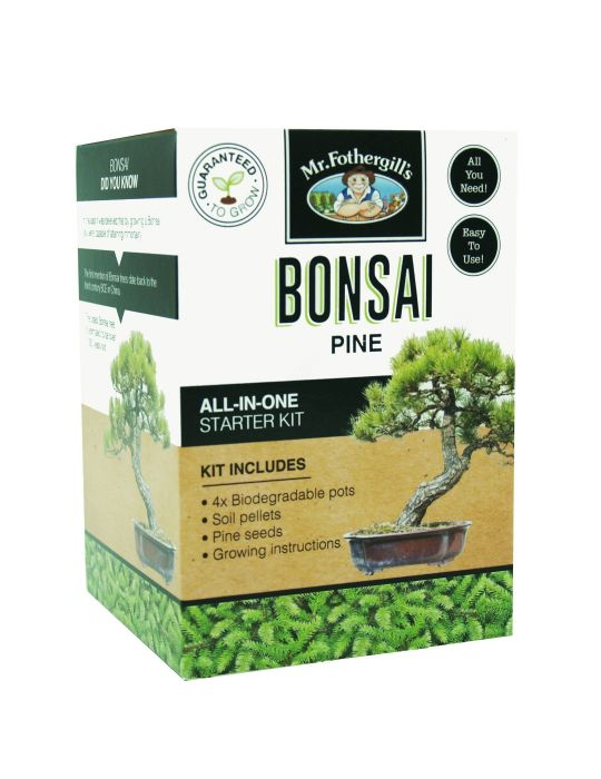 Bonsai Starter Kit - Pine