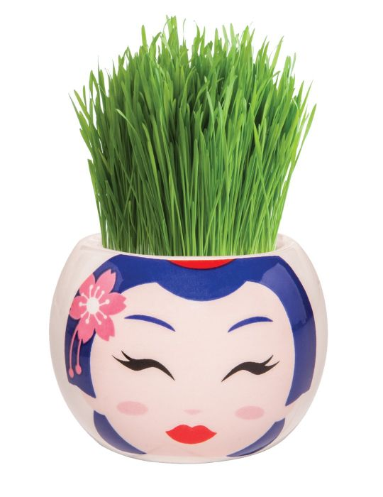 Grass Hair Kit - Hint of Asia (Geisha)