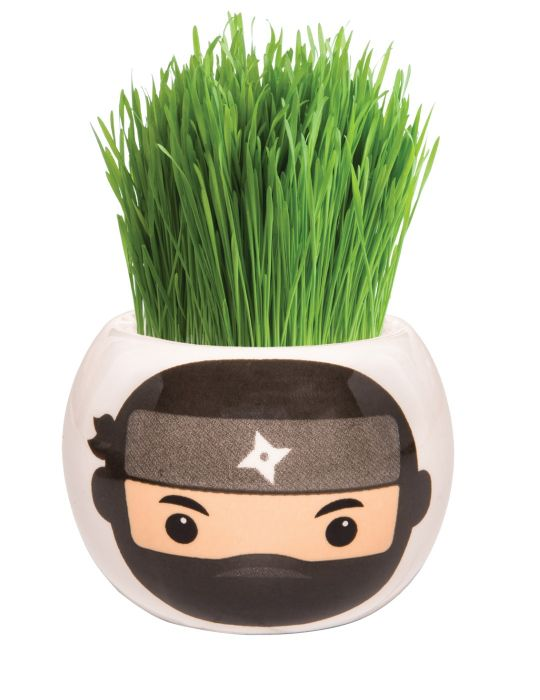 Grass Hair Kit - Hint of Asia (Ninja)