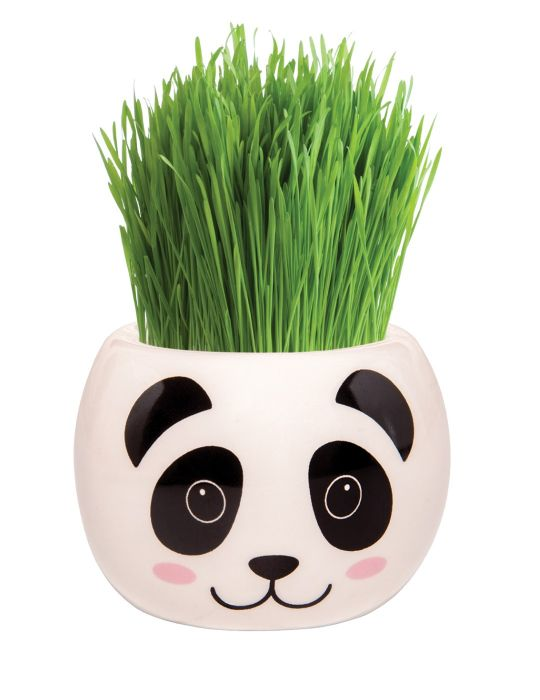Grass Hair Kit - Hint of Asia (Panda)