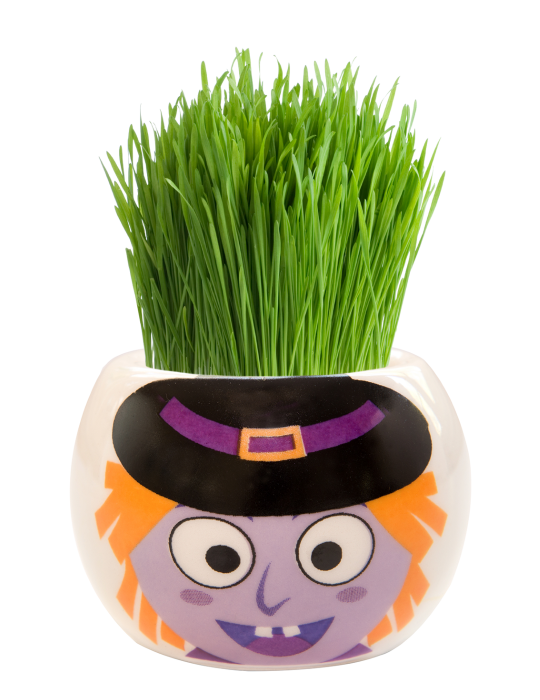Grass Hair Kit -  Halloween Party (Witch)