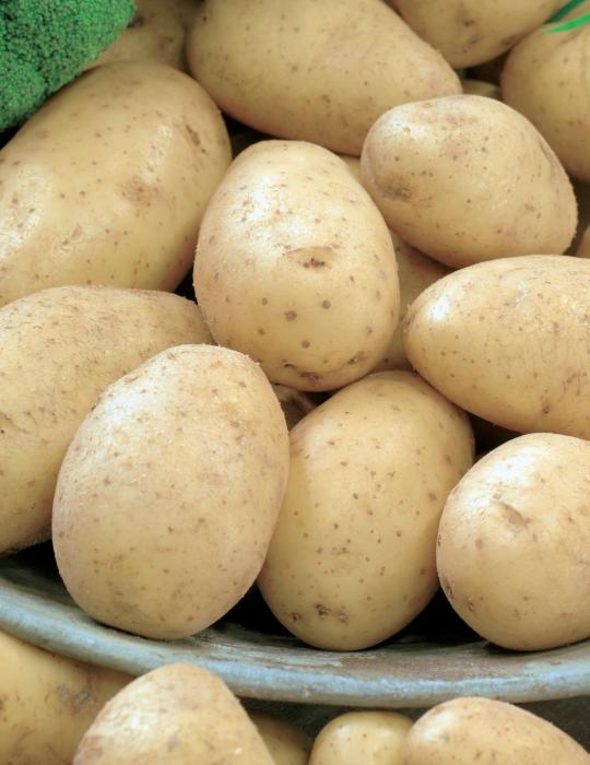Potato Snow Gem 1kg bag
