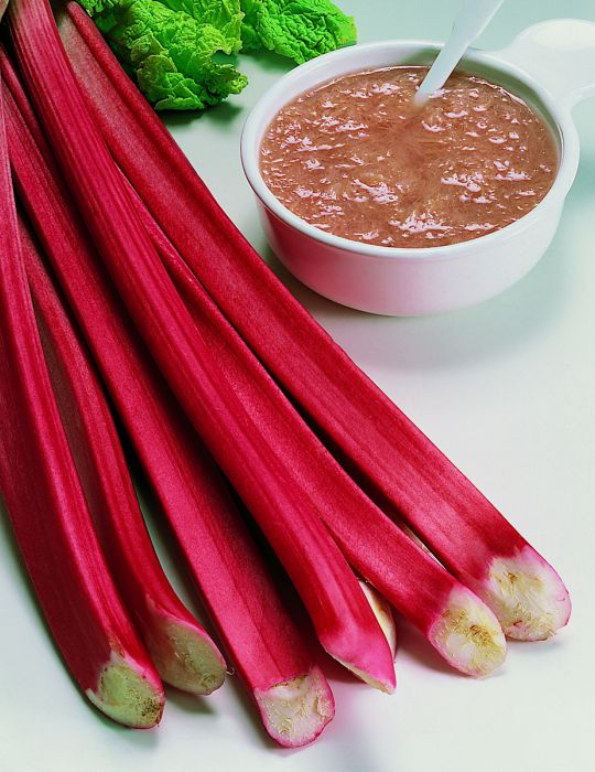 Rhubarb Ever Red (Bulb)
