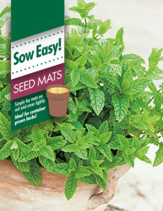 Mint Seed Mat