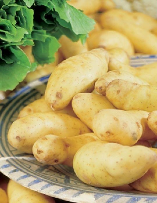 Potato Kipfler 500g bag