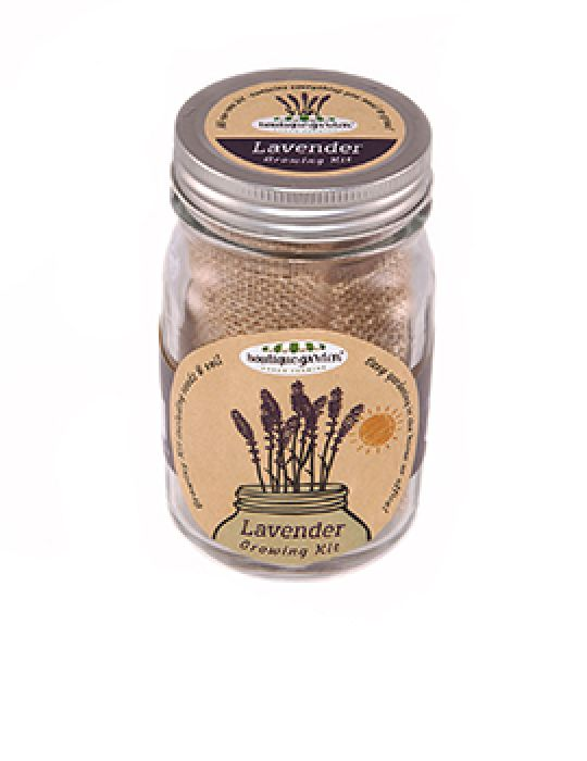 Mason Jar Grow Kits - Lavender