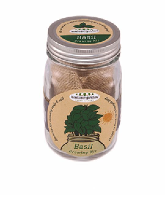 Mason Jar Grow Kits - Basil