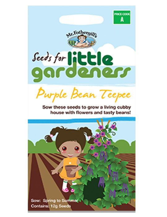 Little Gardeners - Purple Bean Teepee
