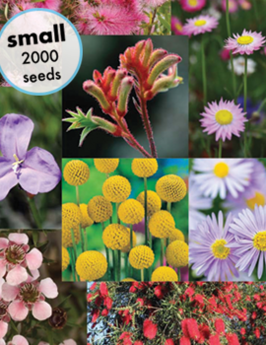 Australian Wildflowers Mix (small) - NOT AVAILABLE TO WA, TAS & SA