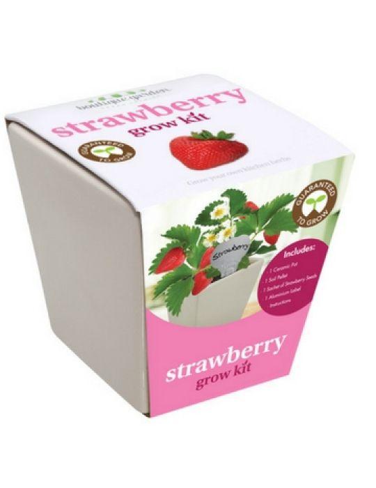 Square Ceramic Pot Strawberry
