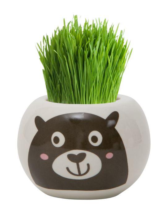 Grass Hair Kit - Wild Adventure (Bear)