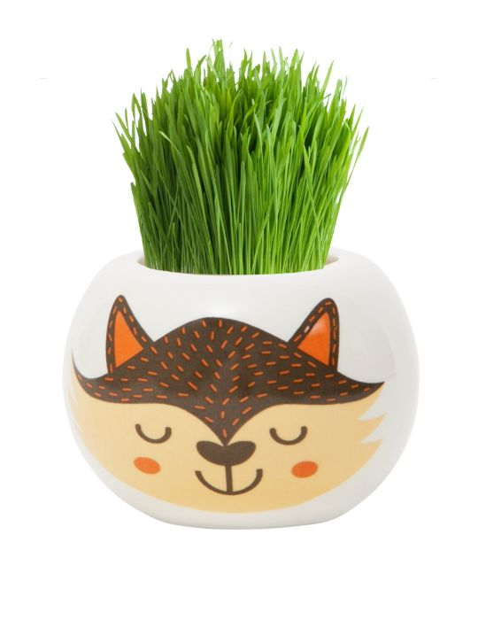 Grass Hair Kit - Wild Adventure (Fox)