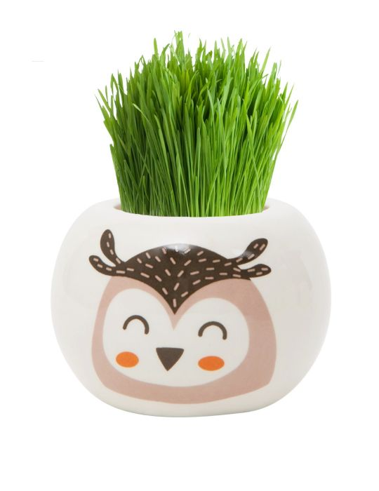 Grass Hair Kit - Wild Adventure (Owl)