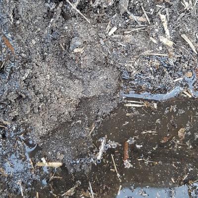 Hydrophobic Soil & How to Fix It
