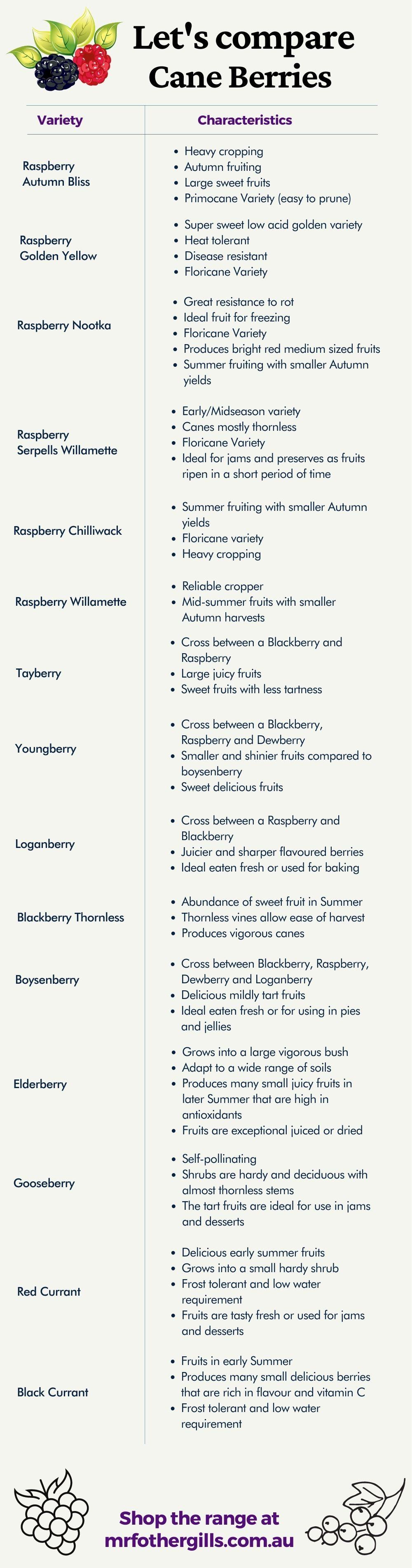 Cane Berry Selector