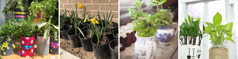 Fundraising with plants