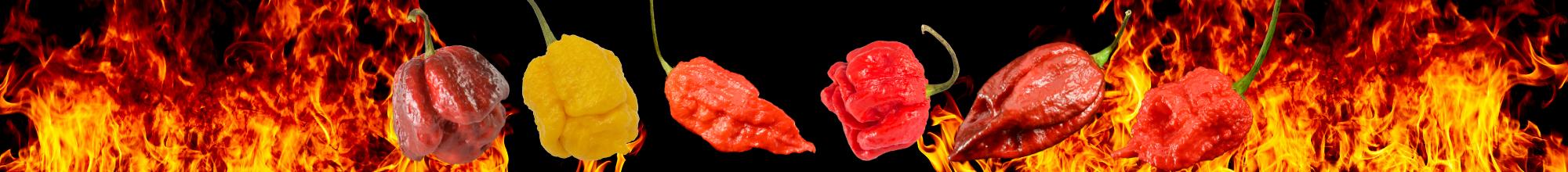 Super Hot Chillies